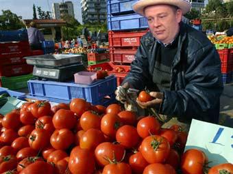 Зашорчука я помидоры)))