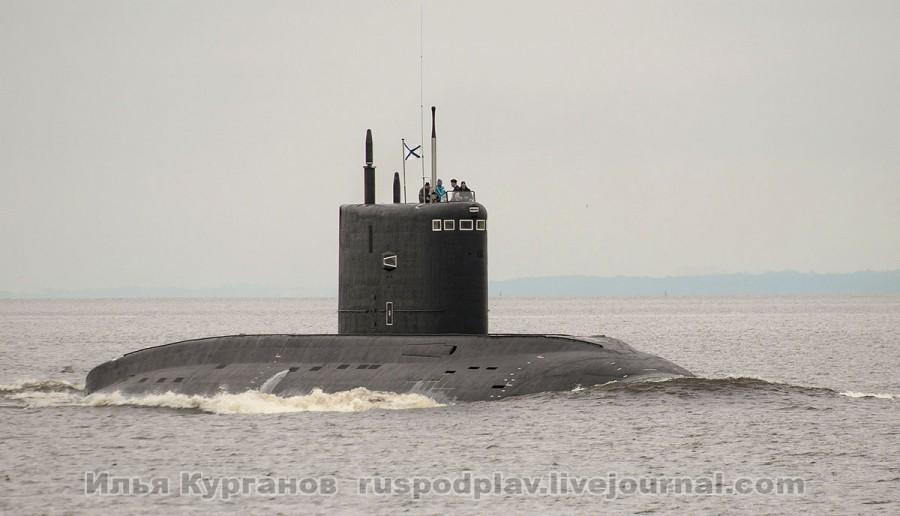 Б-268 «Великий Новгород» проекта 636.3 в Финском заливе