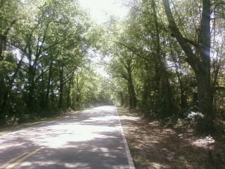 Typical FL rural highway