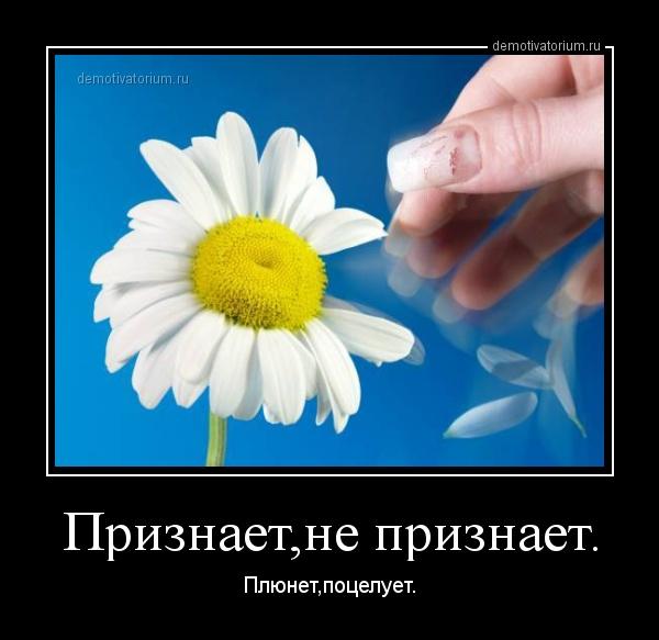 dm_temp_image_32605141118097967156