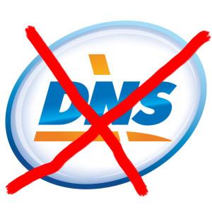 original.389.DNS_logo_easy