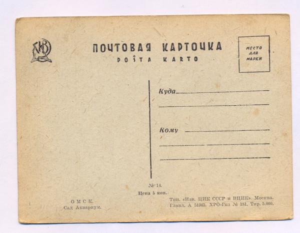 8.Омск.почт.карт 6-2