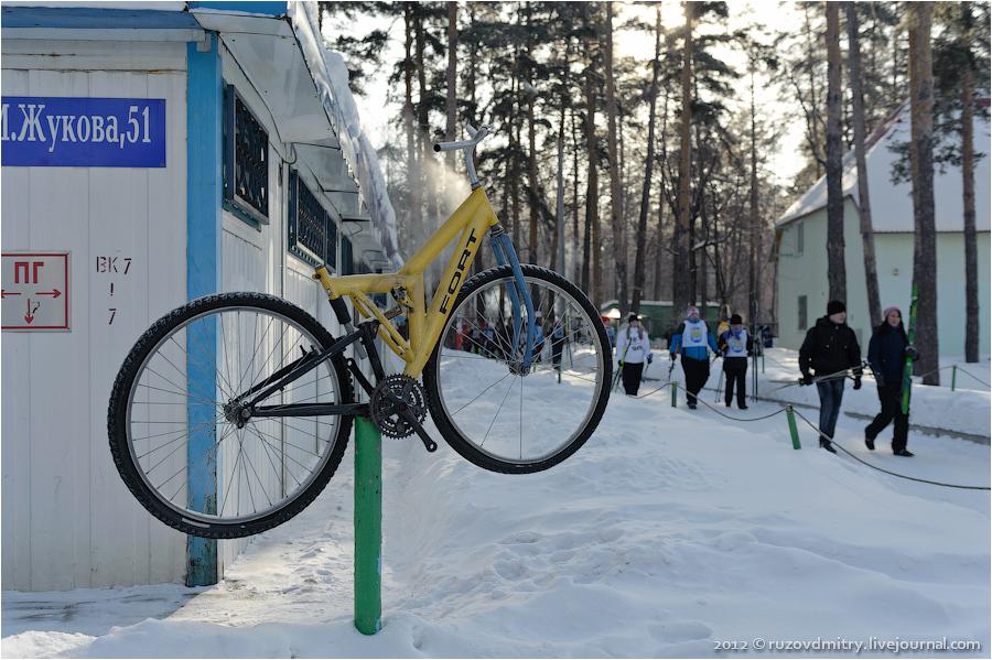 образом, лыжная база тольятти автозаводский район фото художественную мастерскую