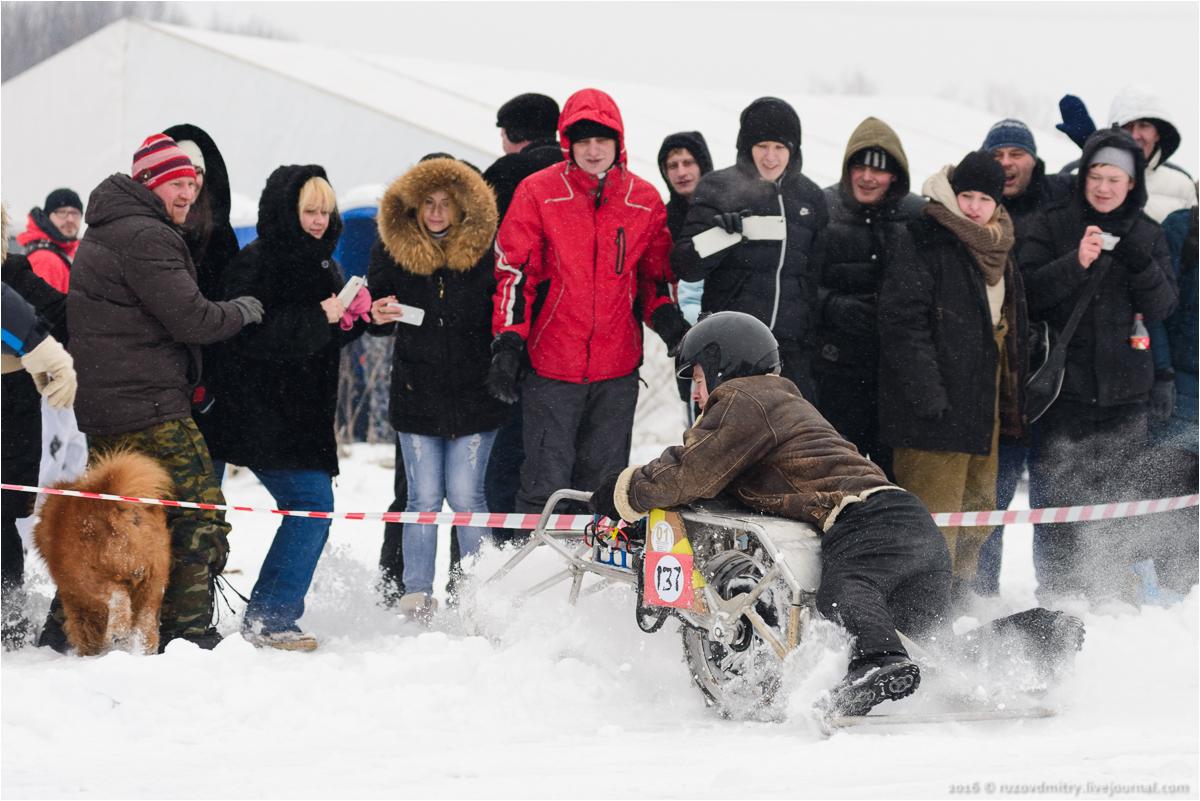 SNOWDOGS 2016
