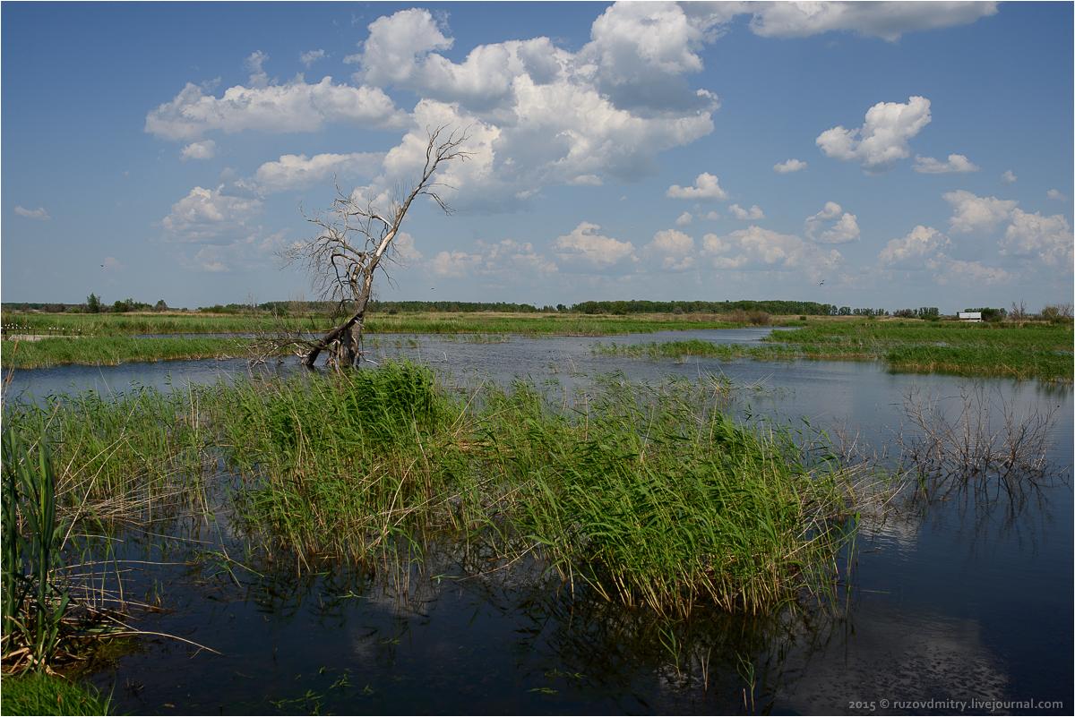 фото верхний сускан самарская область