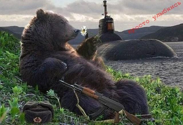 медведьс автоматом