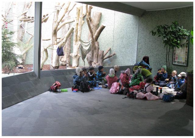 1-мюнхен зоопарк4