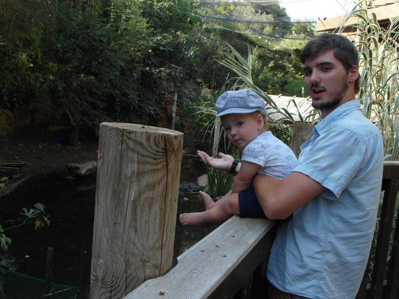 иерусалим зоопарк (2)