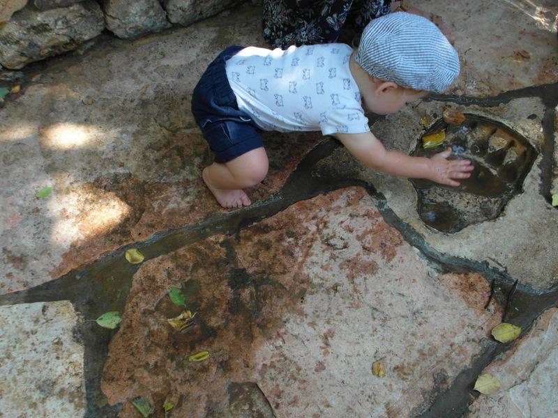 иерусалим зоопарк (3)