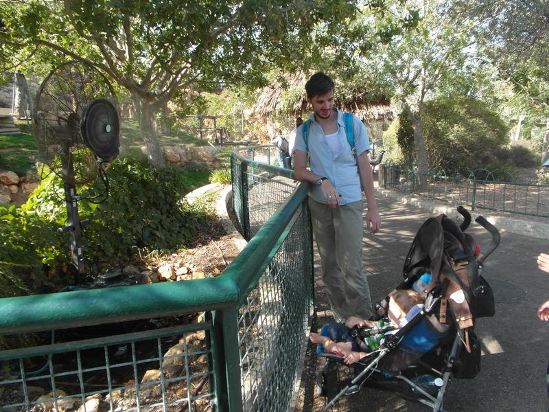 иерусалим зоопарк (10)