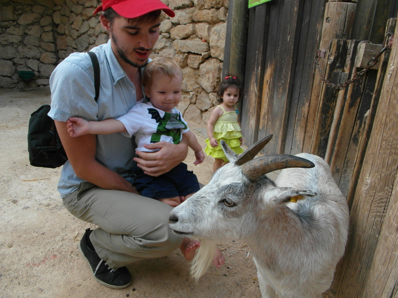 иерусалим зоопарк (41)