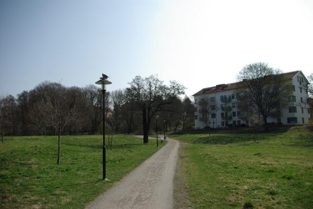 Парк недалеко от отела