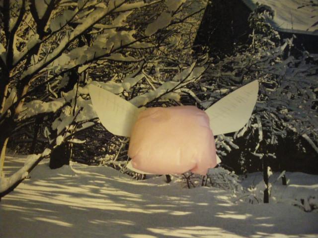 Zelda Pink Fairy