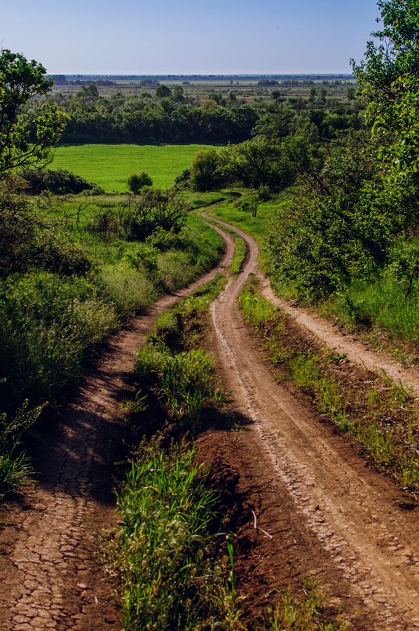 Дорога к егерскому кардону