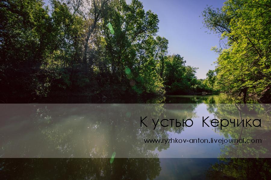 Мокрый Керчик_livejournal