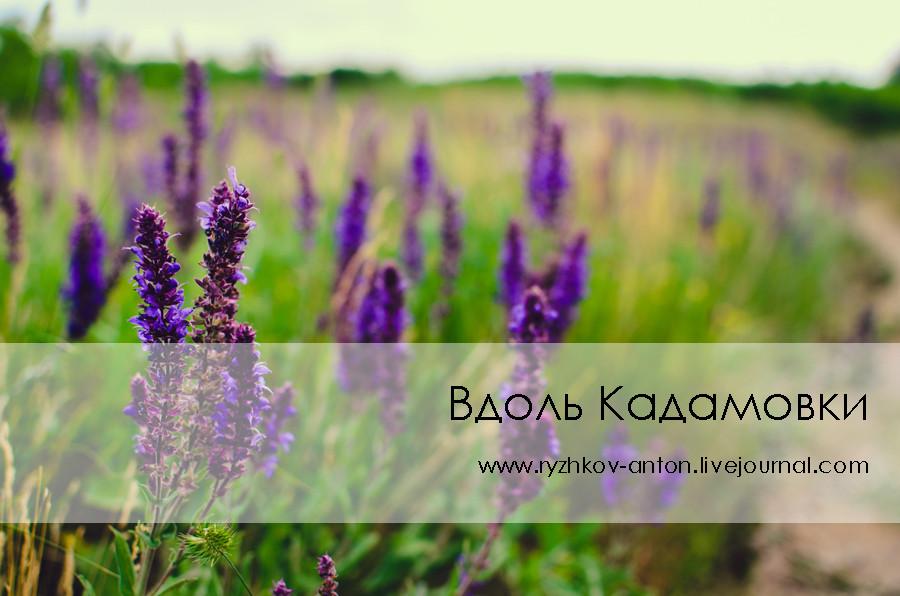 Вдоль Кадамовки_livejournal