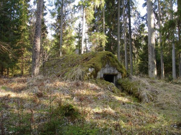 Лагерь советских партизан, лес Грейвас, Латгалия, Латвия