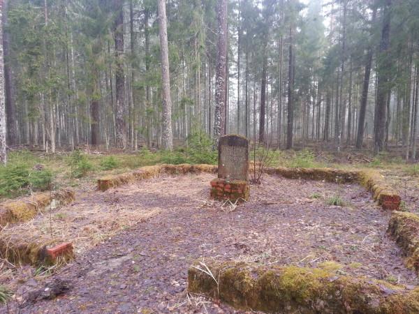 Артурс Балодис, лес Грейвас, Латгалия, Латвия