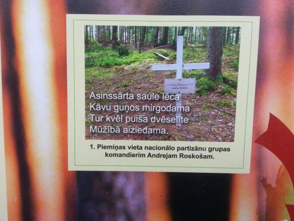 Андрей Роскош, лес Грейвас, Латгалия, Латвия