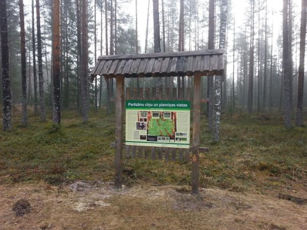 Лес Грейвас, Латгалия, Латвия