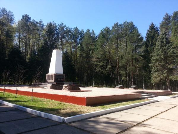 Ёлочки, Наро-Фоминск