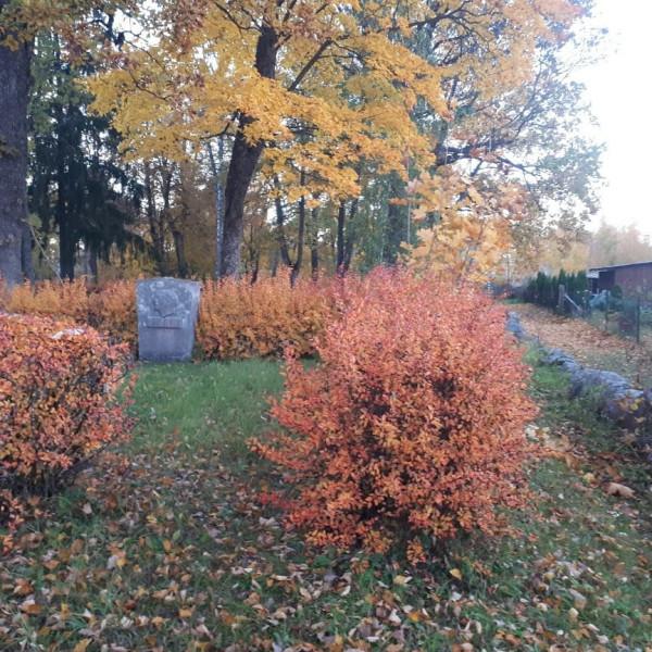 Валка, кладбище Цимзес