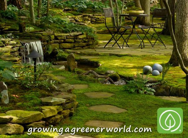 319-moss-gardens-creek-through