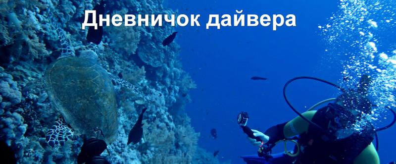 diversdiary.JPG