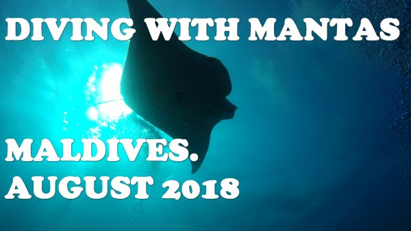 DivingwithMantasLOGO.jpg