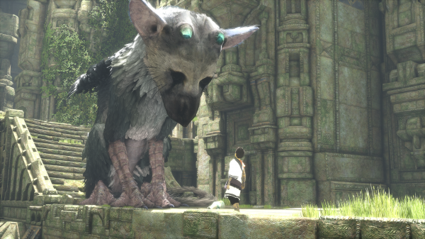 2-trico.png
