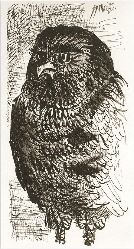 1952 этюд сова.jpg