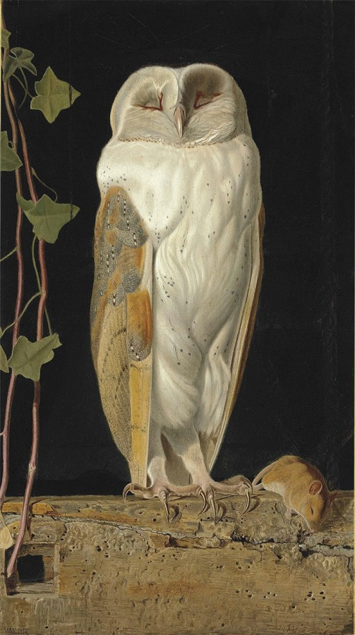 The White Owl. 'Alone and warming his five wits, The white owl in the belfry sits', 1856 г.