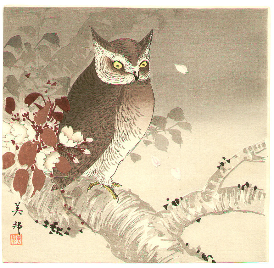 Owl and Cherry Blossoms