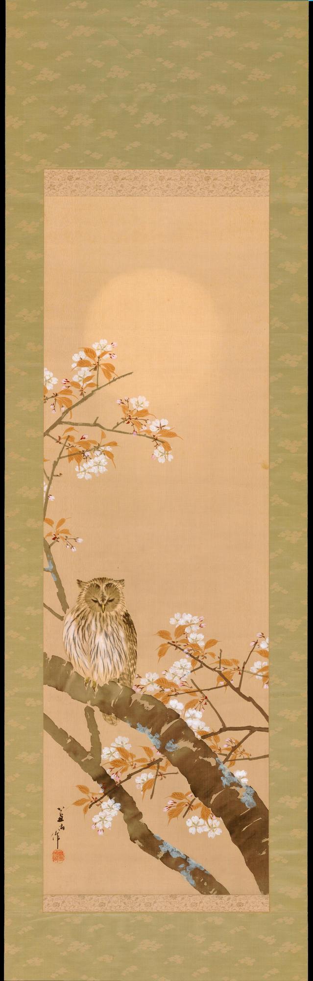 Owl in Cherry Tree