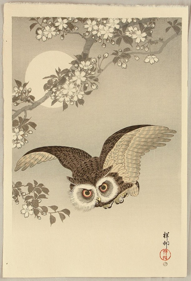 Flying Owl Koson Ohara 1877-1945