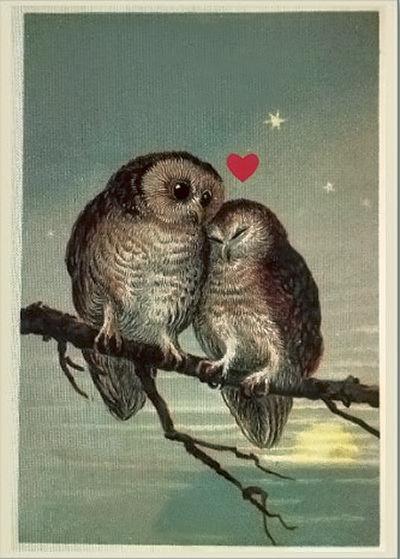Owl-Valentine2