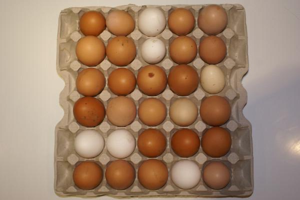 деревенские яйца_1
