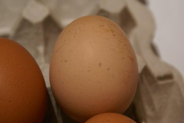 деревенское яйцо_2