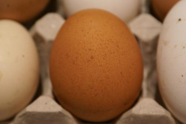 натуральное яйцо