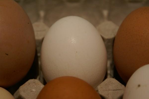 натуральные яйца