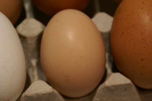 яйца из деревни