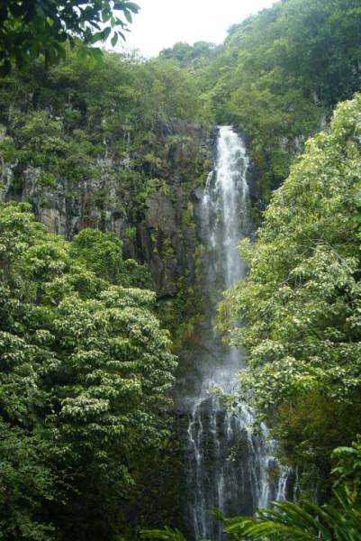 hawaii0501.jpg