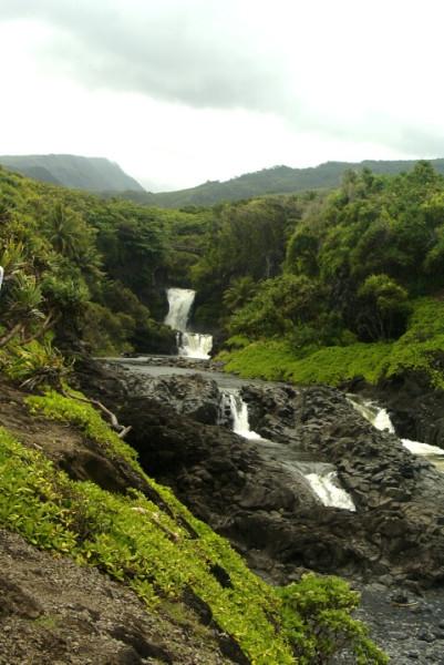 hawaii0502.jpg
