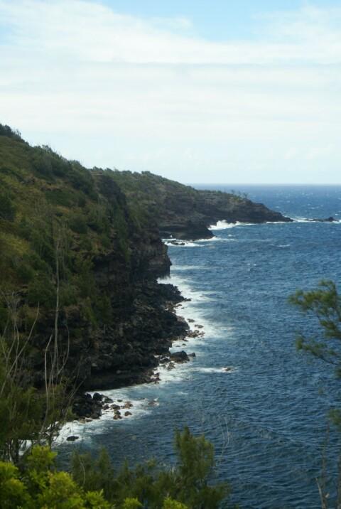 hawaii05072.jpg
