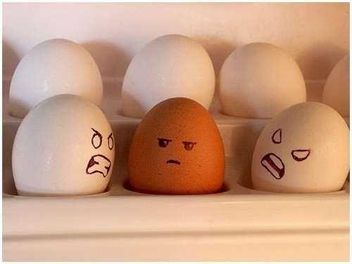 красное яйцо среди белых