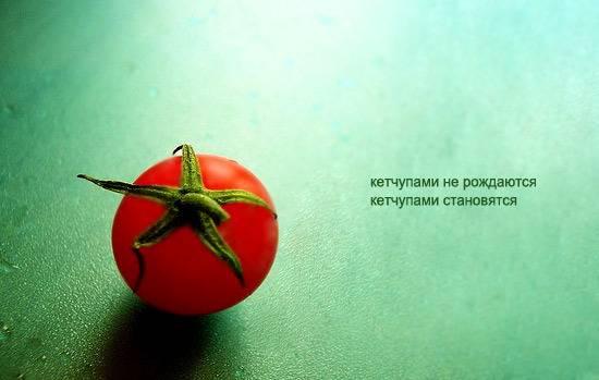 кетчупами не рождаются а становятся