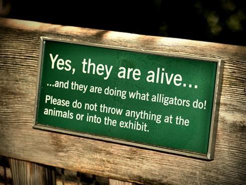 да они живые