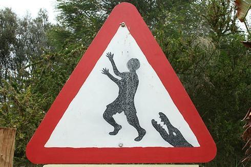 осторожно аллигаторы