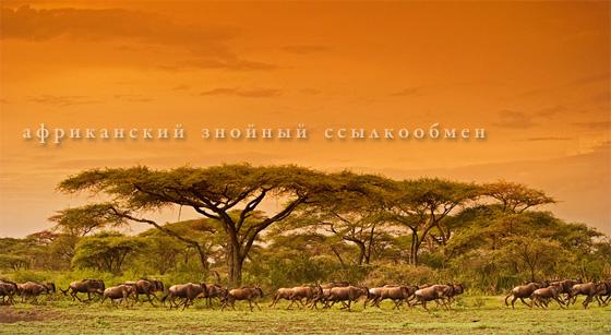 африканский знойный ссылкообмен
