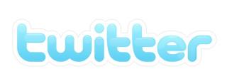 Твиттер Twitter logo логотип